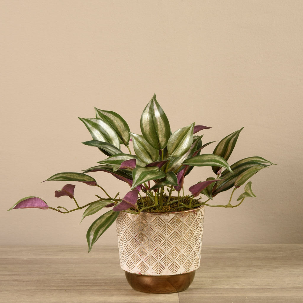 Artificial Potted Vanilla Leaf Plant Bloomr Artificial Flowers & Artificial Trees