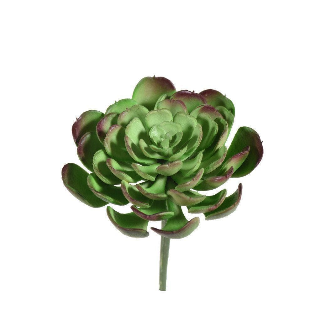 Succulent Bloomr Artificial Flowers & Artificial Trees