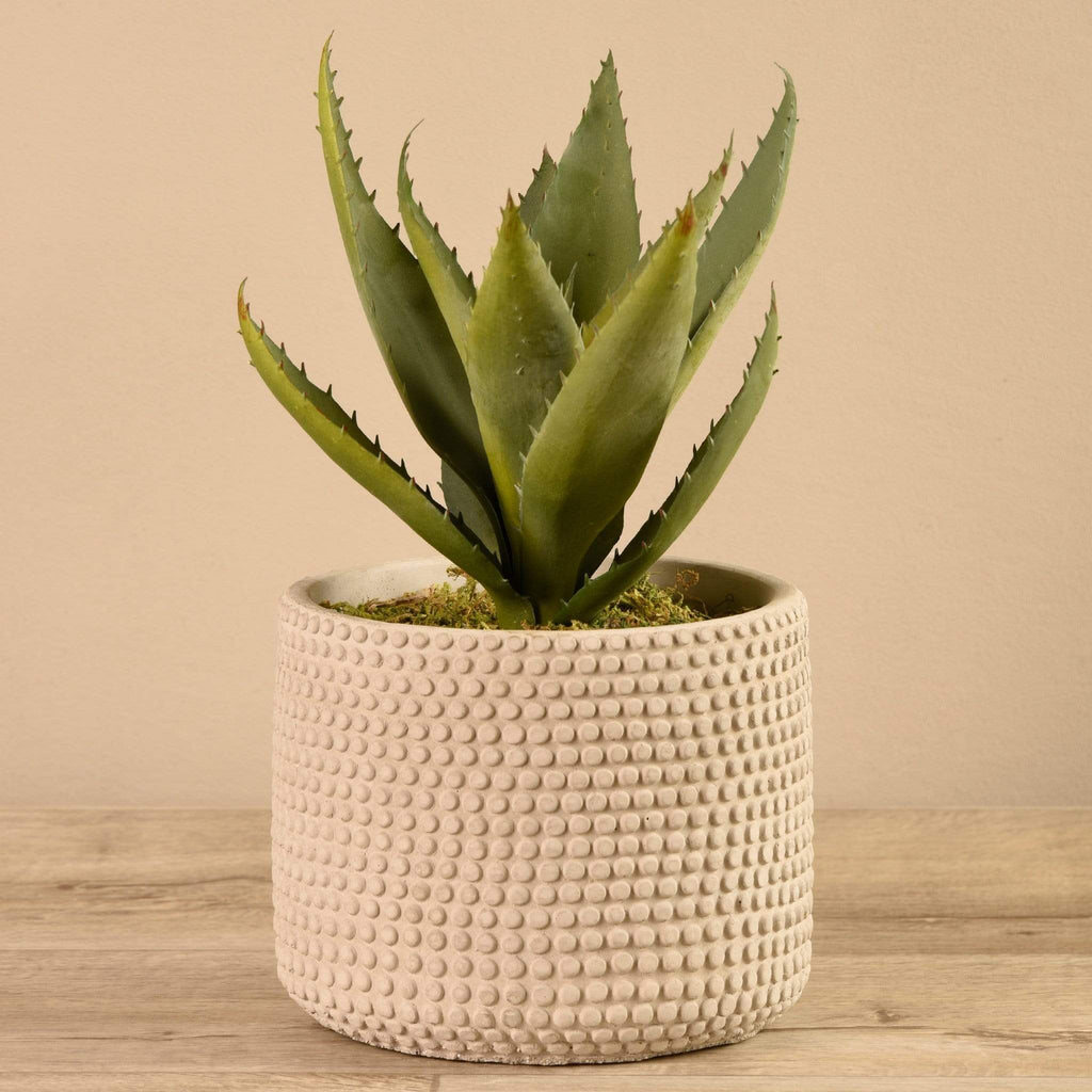 Artificial Aloe in Cement Pot Bloomr Artificial Flowers & Artificial Trees