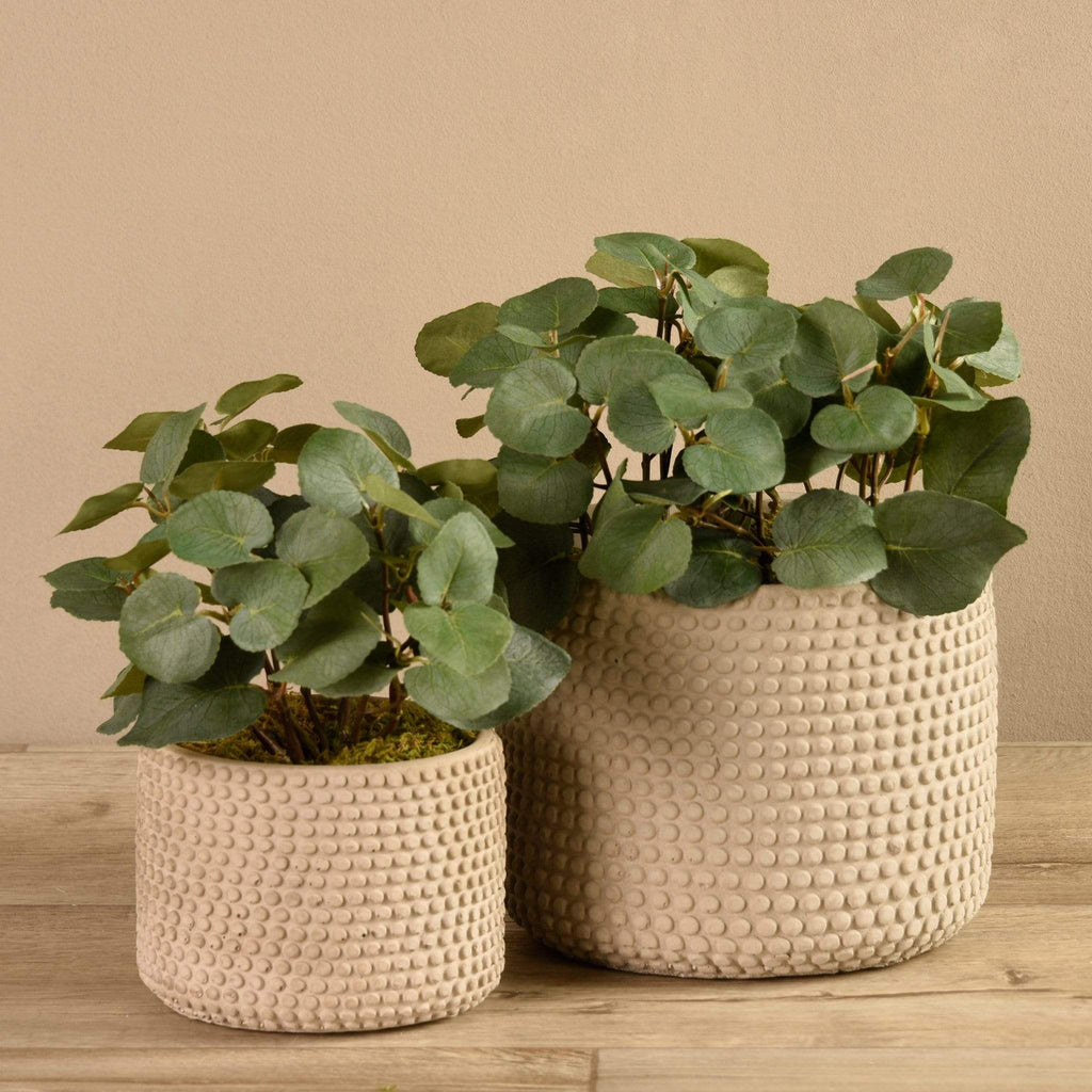 Eucalyptus In Cement Pot Bloomr Artificial Flowers & Artificial Trees