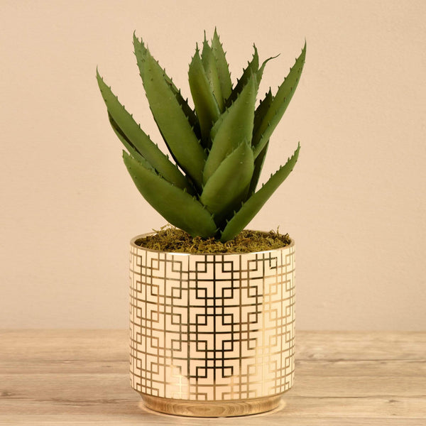 Potted Agave Bloomr Artificial Flowers & Artificial Trees
