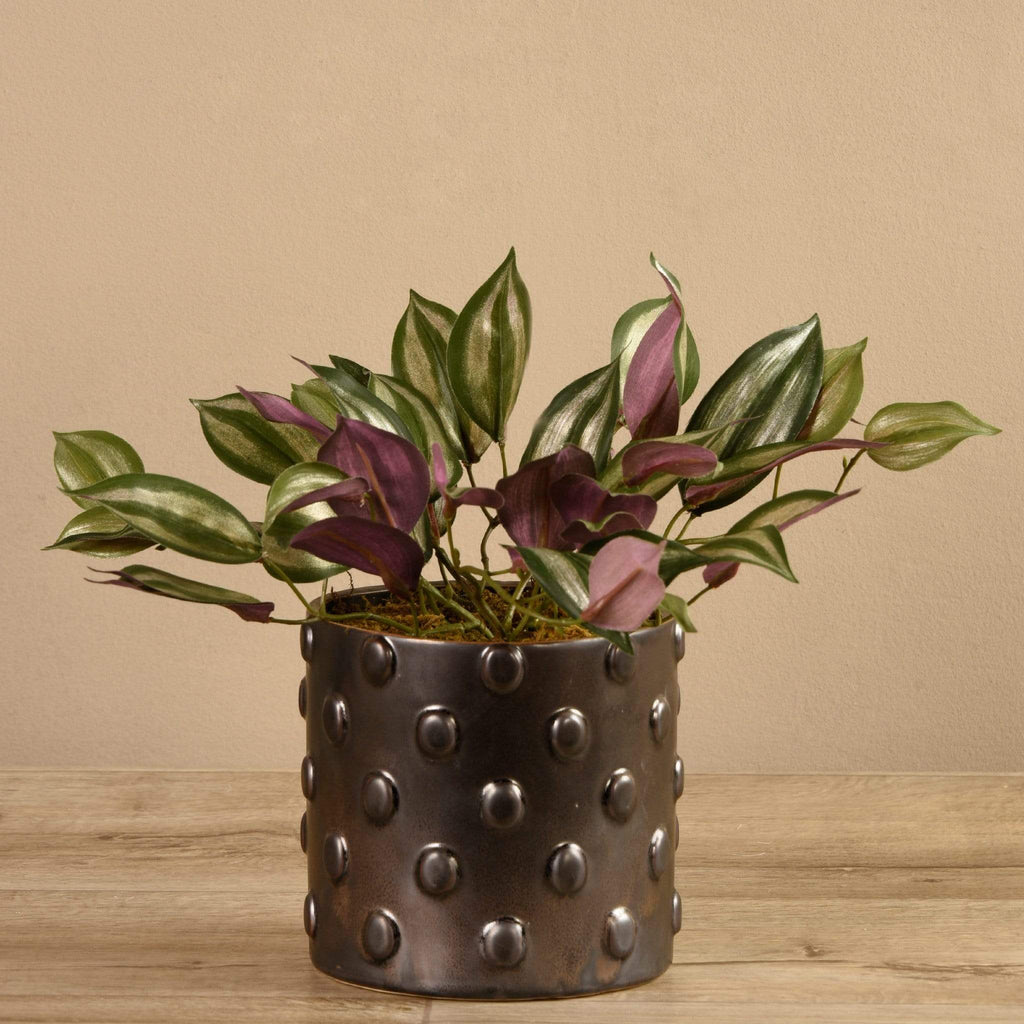 Potted Dark Vanilla Leaf Bloomr Artificial Flowers & Artificial Trees