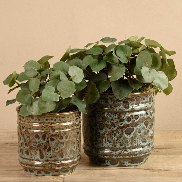 Potted Eucalyptus Bloomr Artificial Flowers & Artificial Trees