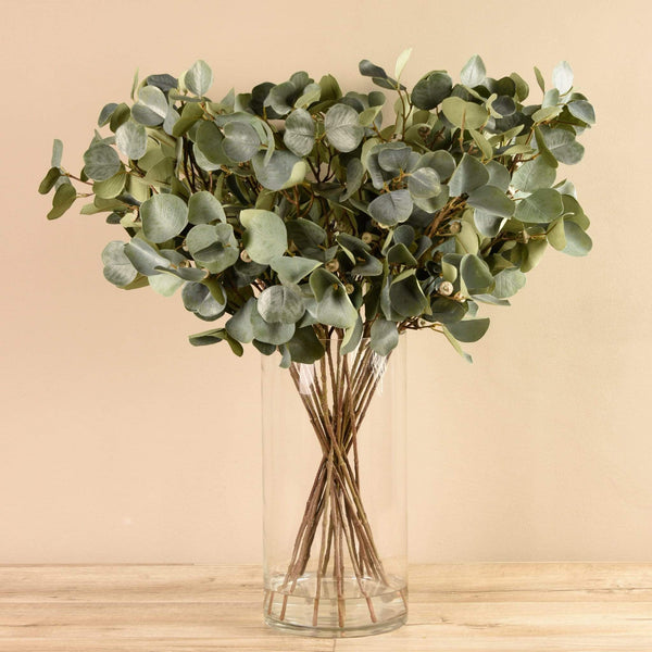 Potted Eucalyptus In Glass Vase