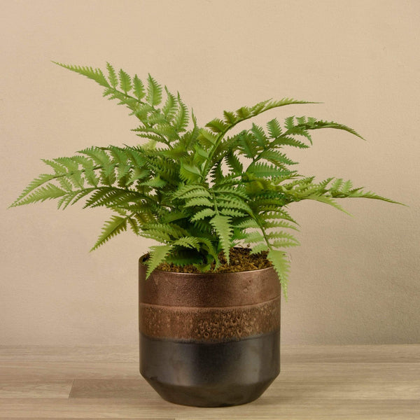 Artificial Potted Fern - Bloomr