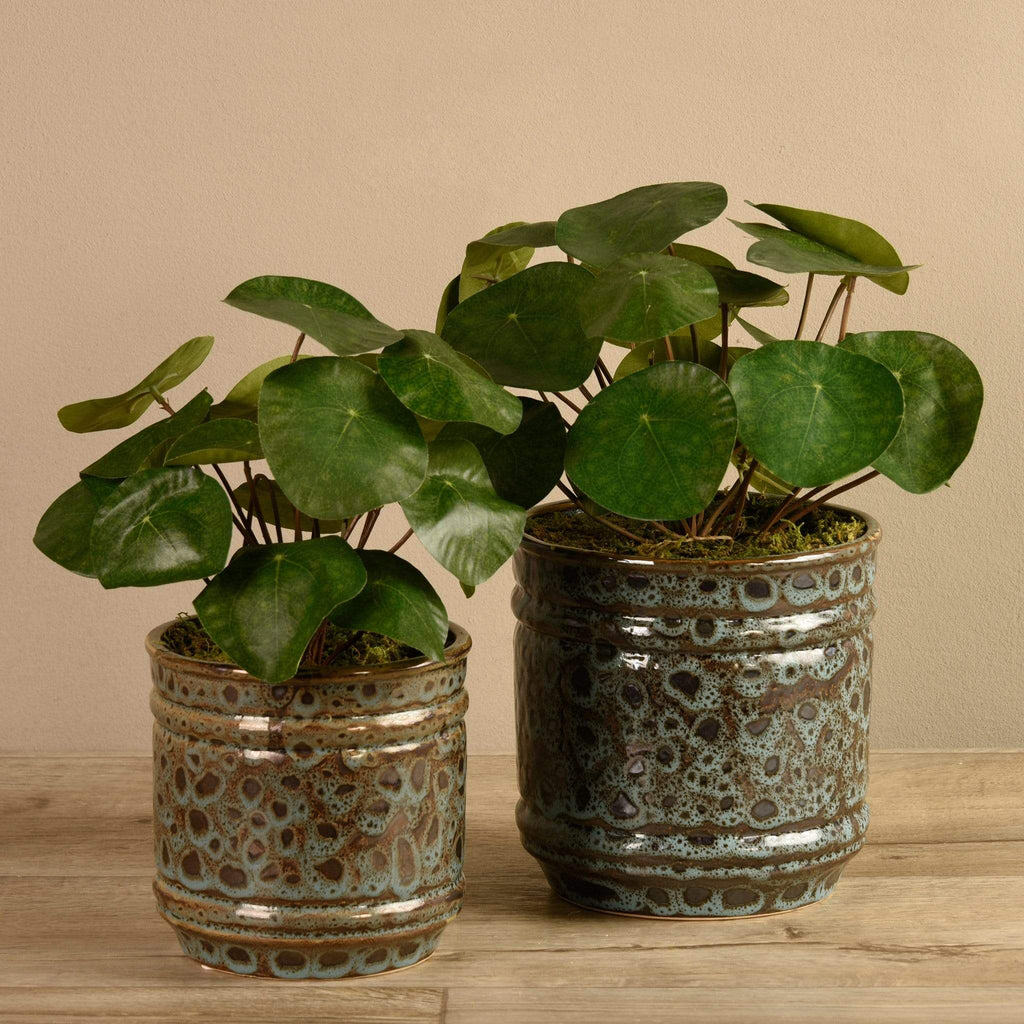 Potted Pancake Bloomr Artificial Flowers & Artificial Trees