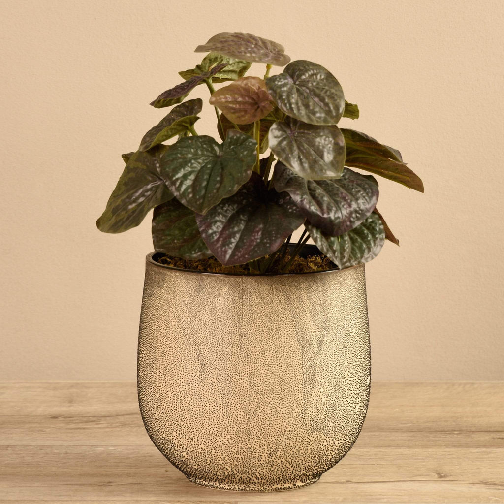 Potted Peperomia Dark Bloomr Artificial Flowers & Artificial Trees