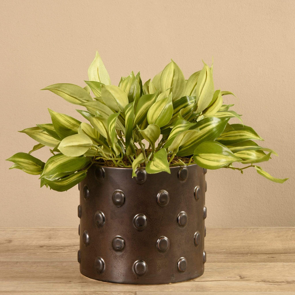 Potted Vanilla Leaf Bloomr Artificial Flowers & Artificial Trees
