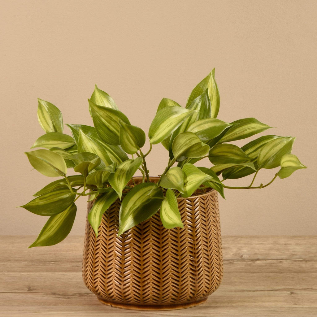 Artificial Potted Vanilla Leaf Plant - Bloomr