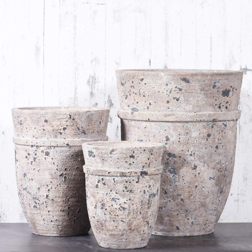Round Cement Pot Bloomr Artificial Flowers & Artificial Trees