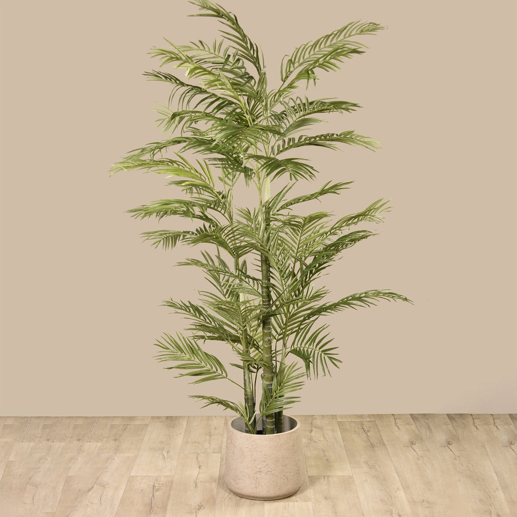 Areca Bloomr Home Artificial Flowers and Trees