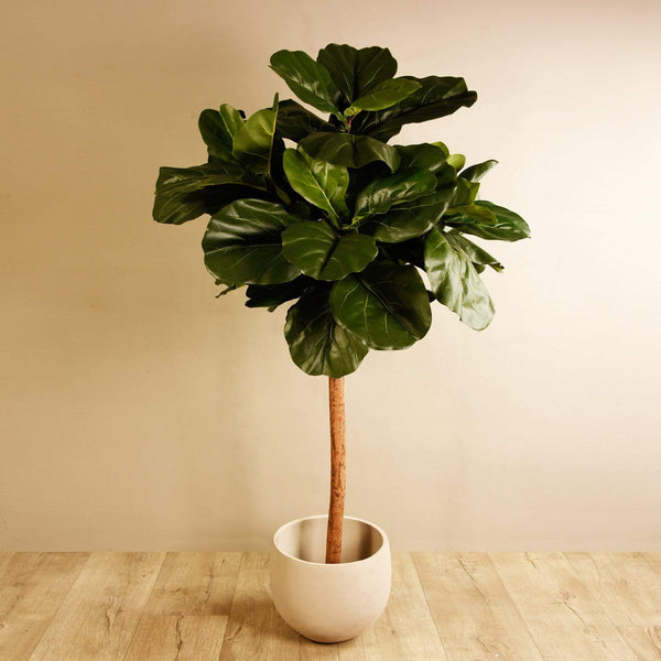 Fiddle Leaf Tree Bloomr Artificial Flowers & Artificial Trees