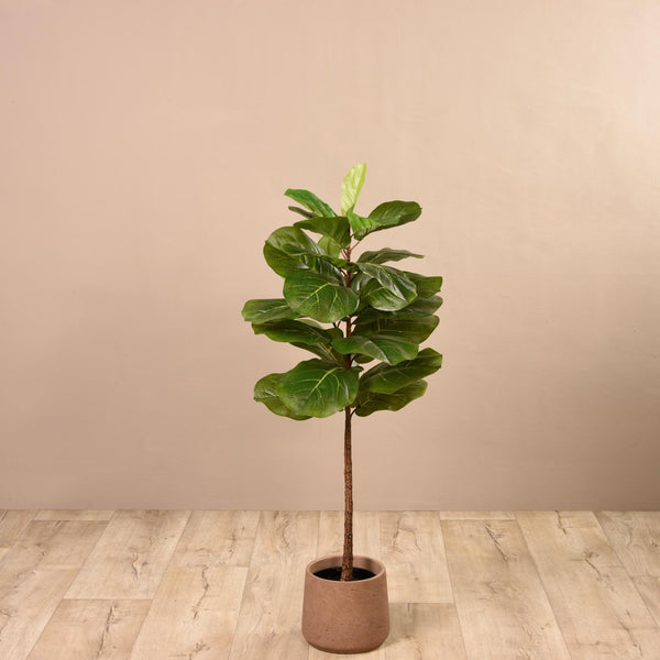 Fiddle Leaf Tree Small Bloomr Artificial Flowers & Artificial Trees