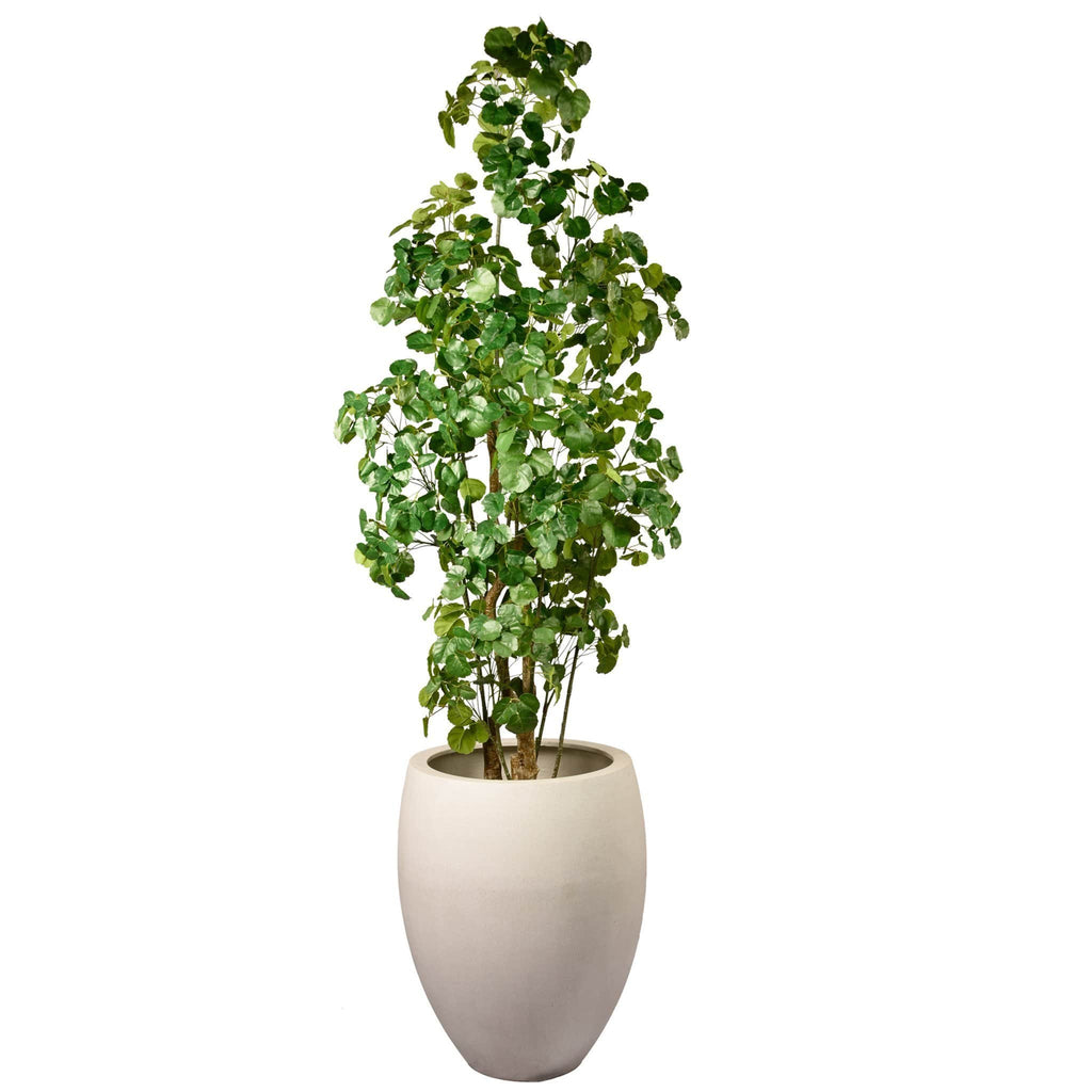 Money Tree Bloomr Artificial Flowers & Artificial Trees