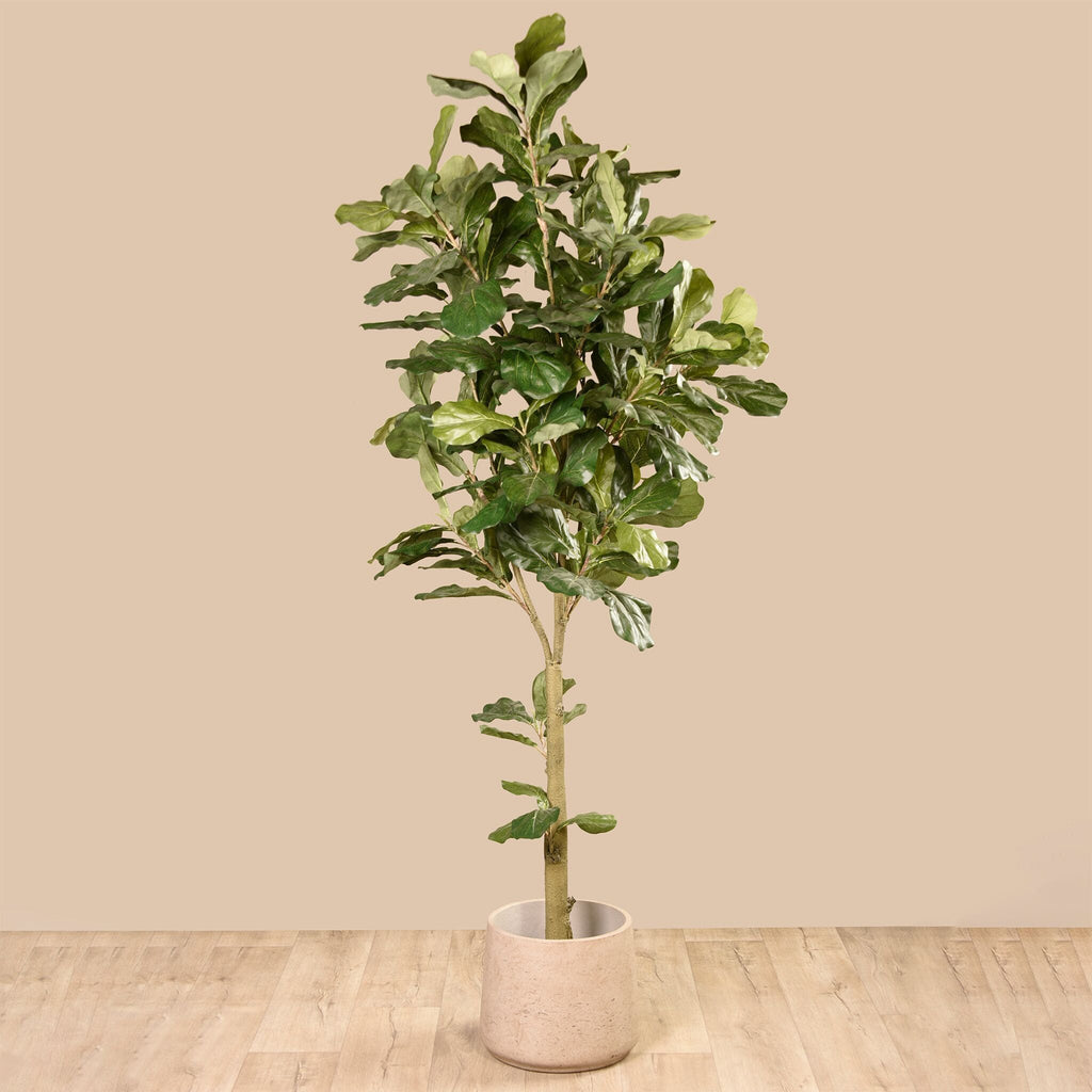 Fiddle Tree Bloomr Artificial Flowers & Artificial Trees