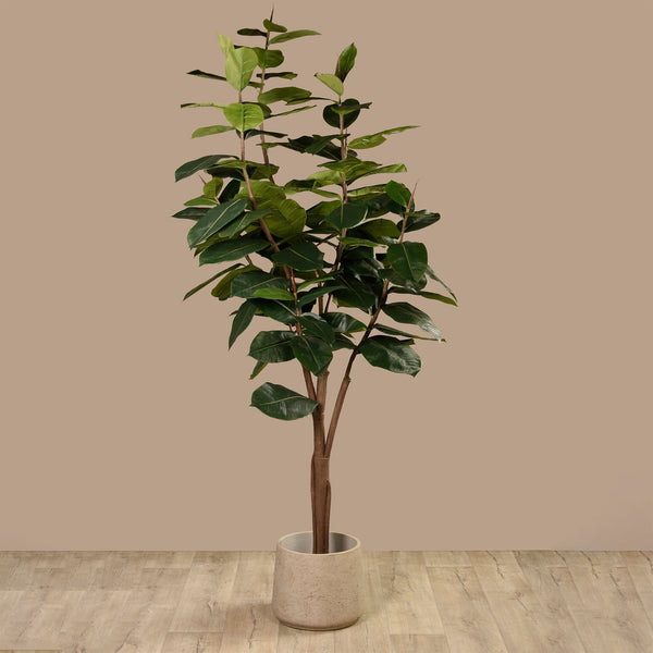 Artificial Rubber Plant Bloomr Artificial Flowers & Artificial Trees