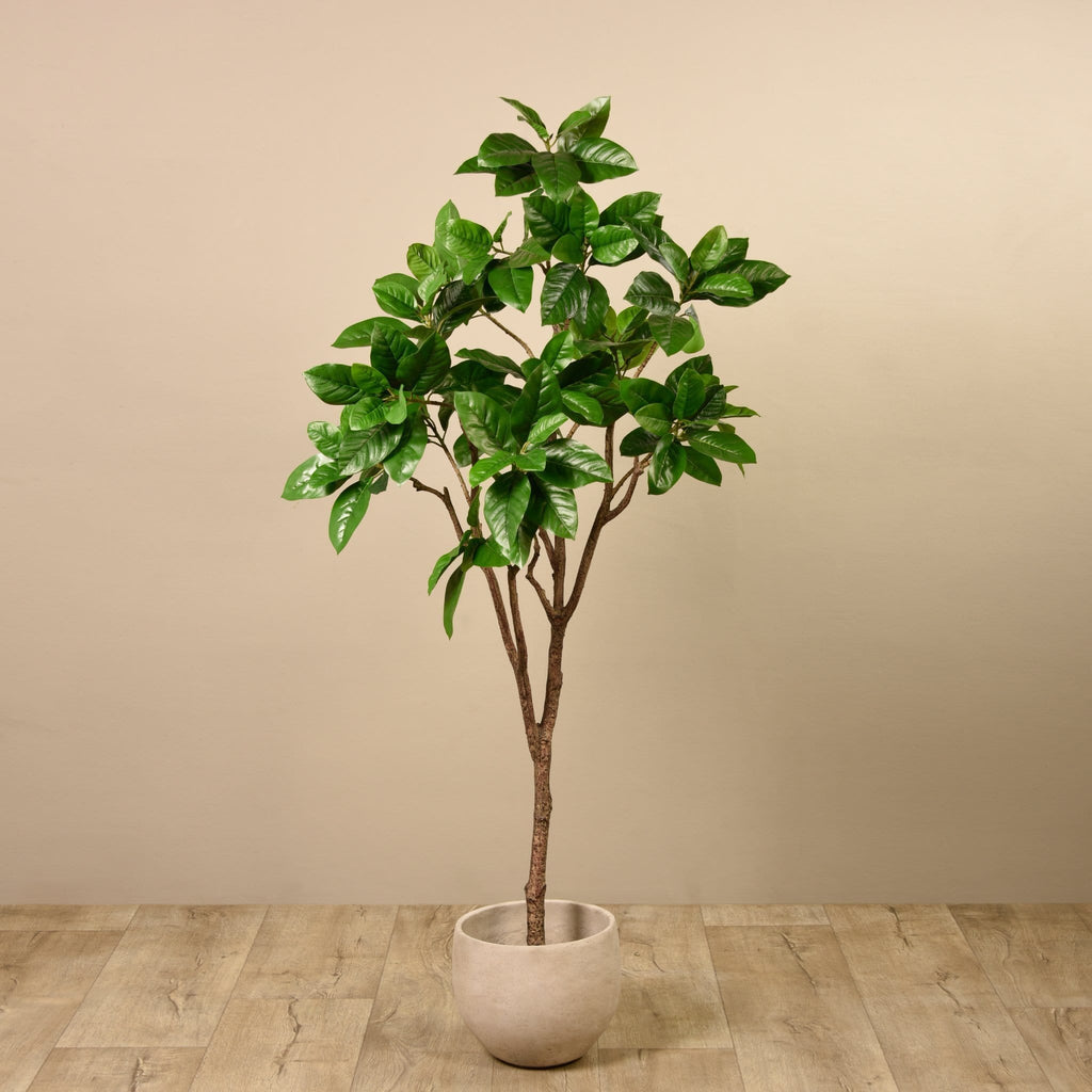 Rubber Tree Bloomr Artificial Flowers & Artificial Trees