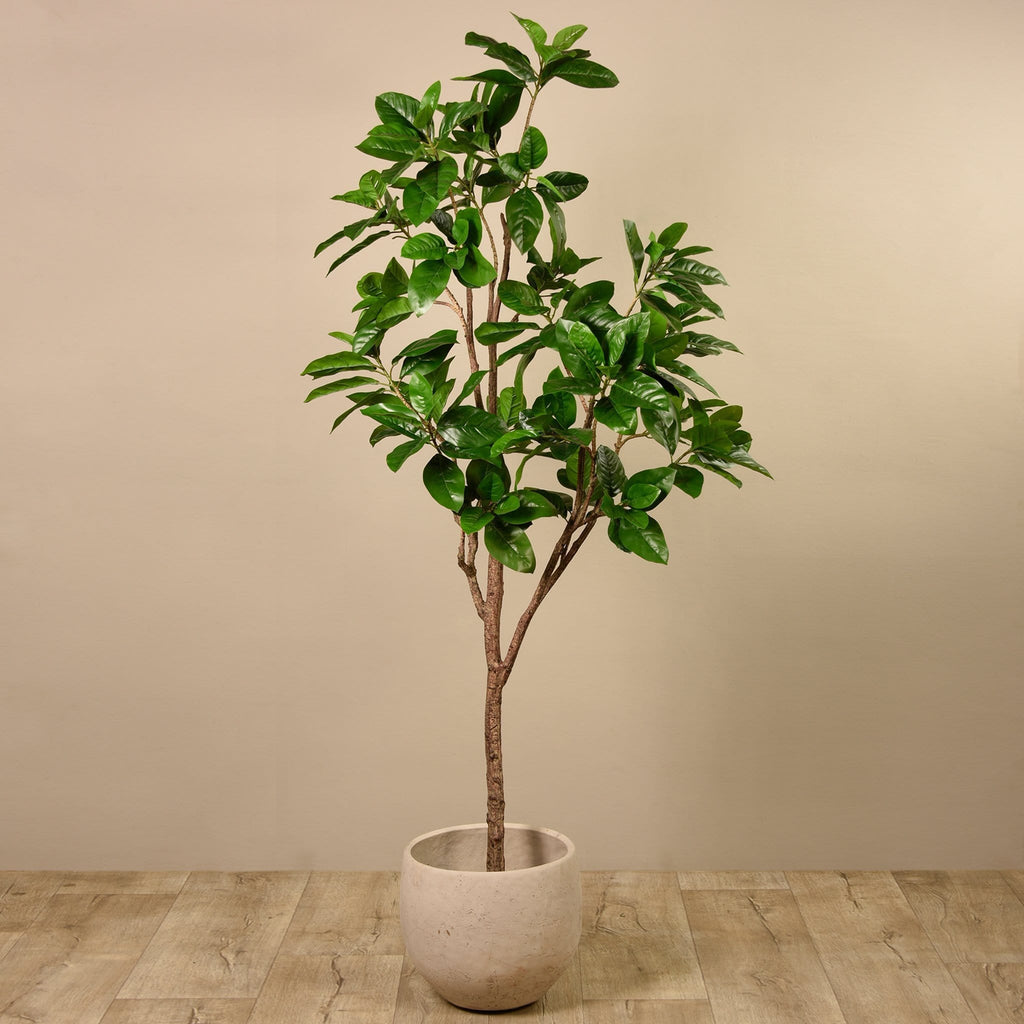 Artificial Rubber Tree Bloomr Artificial Flowers & Artificial Trees