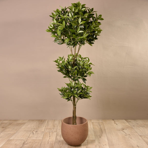 Shikiba Tree Bloomr Artificial Flowers & Artificial Trees