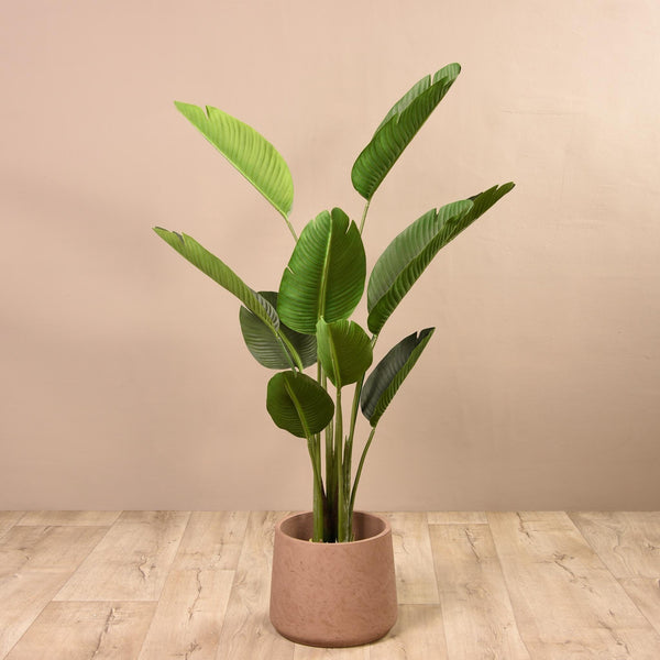 Artificial Strelitzia Tree Bloomr Artificial Flowers & Artificial Trees