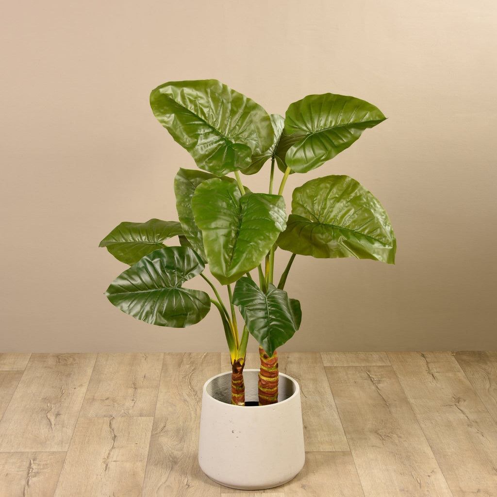 Taro Plant Bloomr Artificial Flowers & Artificial Trees