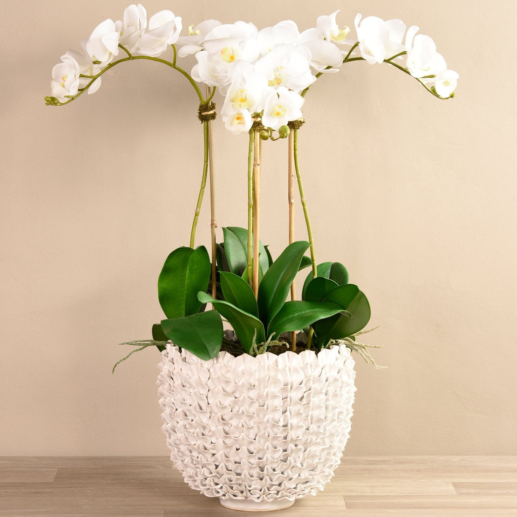 Shell Orchid White Bloomr Artificial Flowers & Artificial Trees