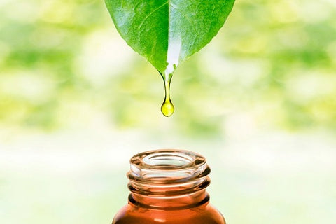 natural oil extracts image