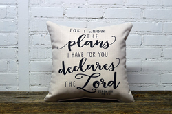 I know the plans Pillow