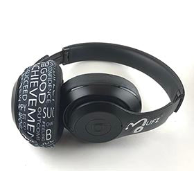 Headphone Covers (Motivation)