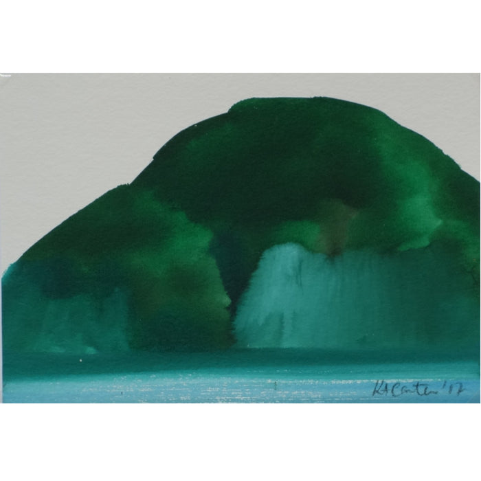 Bay of Islands Study I
