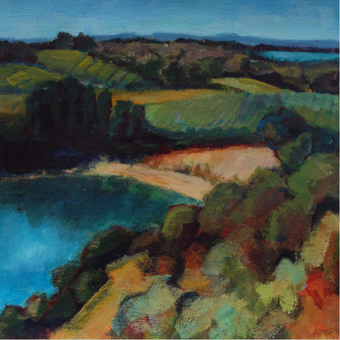 View over Grapevines, Waiheke