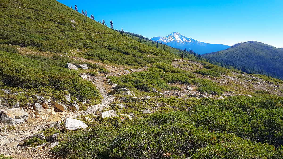 Leaving Mount Shasta behind 1500 plus miles into the Pacific Crest Trail
