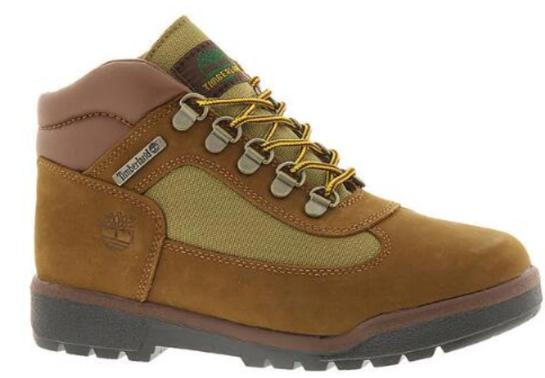 Boy's Timberland Field Waterproof Nubuck Field Boot. Brown
