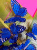 Wild Blue Yonder butterfly fascinator
