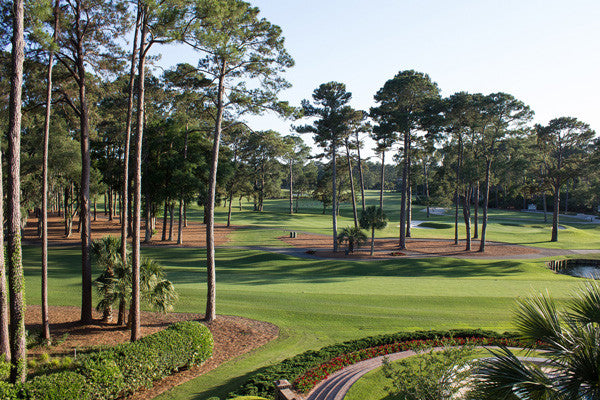 The Top 5 Best Hidden Gem Golf Courses in America