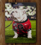 UGA Georgia Bulldogs Art: Uga X Under the Lights Mascot Photo Print / Fine Art Print / Canvas Wrap