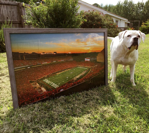 UGA Georgia Bulldogs Art: Sanford Stadium Redout Art Poster Print