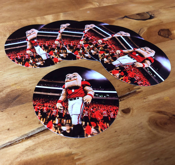 "UGA Georgia Bulldogs Sticker 6-Pack - Hairy Dawg Hype - 2.75"" Circle Vinyl Photo Decals - Party Gifts for Graduation, Kids, Students & Alumni"