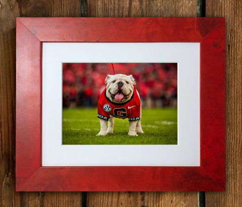 UGA Georgia Bulldogs Uga X Mascot Limited Edition Framed Print