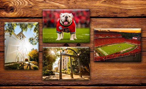 "UGA Georgia Bulldogs Fridge Magnet Variety 4-Pack - 2.5""x3.5"" Premium Tin Plate Photo Gift"