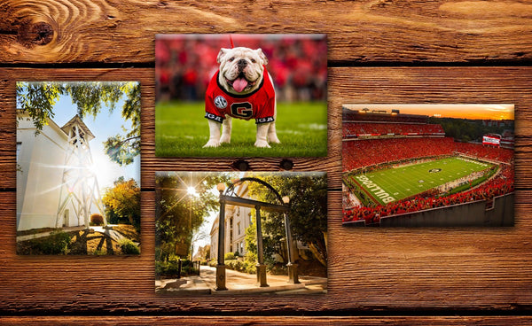"UGA Georgia Bulldogs Fridge Magnet Variety 4-Pack - 2.5""x3.5"" Premium Tin Plate Photo  - Party Gifts for Graduation, Kids, Students & Alumni"