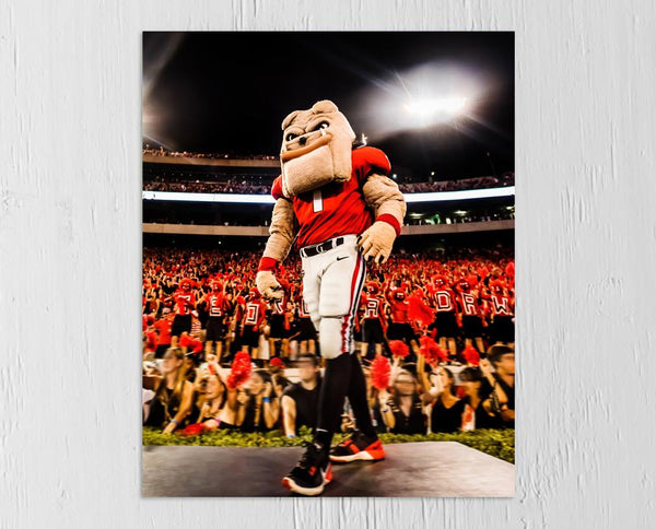 "UGA Georgia Bulldogs Art: ""Hairy Dawg Hype"" 2017 Mascot Photo Print / Canvas Wrap"