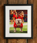 UGA Georgia Bulldogs Art: 2017 Uga X SEC Championship Mascot Photo Print / Canvas Wrap