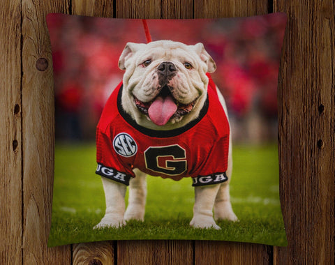 UGA: Georgia Bulldogs Uga X Mascot Throw Pillow - Indoor/Outdoor for Tailgate, Patio, Dawg Cave, Home Decor