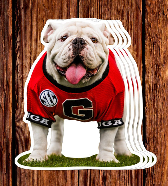 UGA Georgia Bulldogs Sticker - Uga X Mascot - Die Cut Vinyl Decal w/ Premium Photos - Gift for Kids, Student, Alumni & Fan
