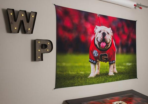 UGA Georgia Bulldogs Art: Uga X Mascot Tapestry Poster Wall Art Photo - 2XL & 3XL Sizes
