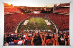 UGA Georgia Bulldogs Art: Saturday in Athens Sanford Stadium Tapestry Wall Art Photo - 2XL & 3XL