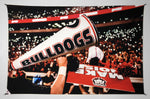 UGA Georgia Bulldogs Art: 2017 Light Up Sanford Stadium Tapestry Poster Wall Art Photo - 2XL & 3XL