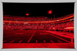 UGA Georgia Bulldogs Art: Red Lights Show Photo Tapestry Print - 2XL & 3XL Sizes