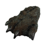 Wishpets Black Grizzly Bear Fuzzy Slipper